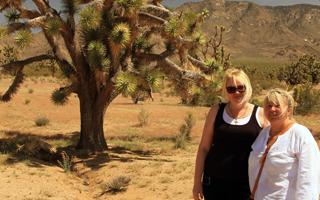 Экскурсия на красный каньон